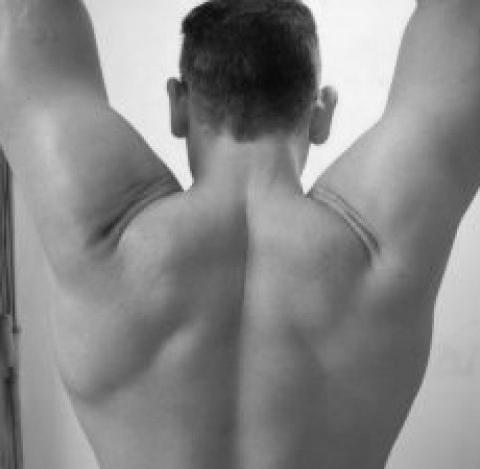 prévention des blessures aux épaules musculation